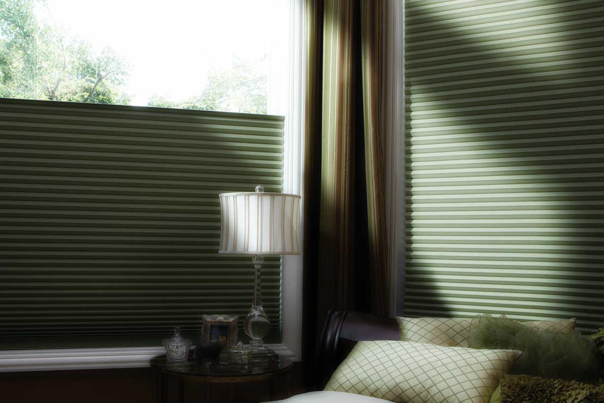 Hunter Douglas Duette Blinds